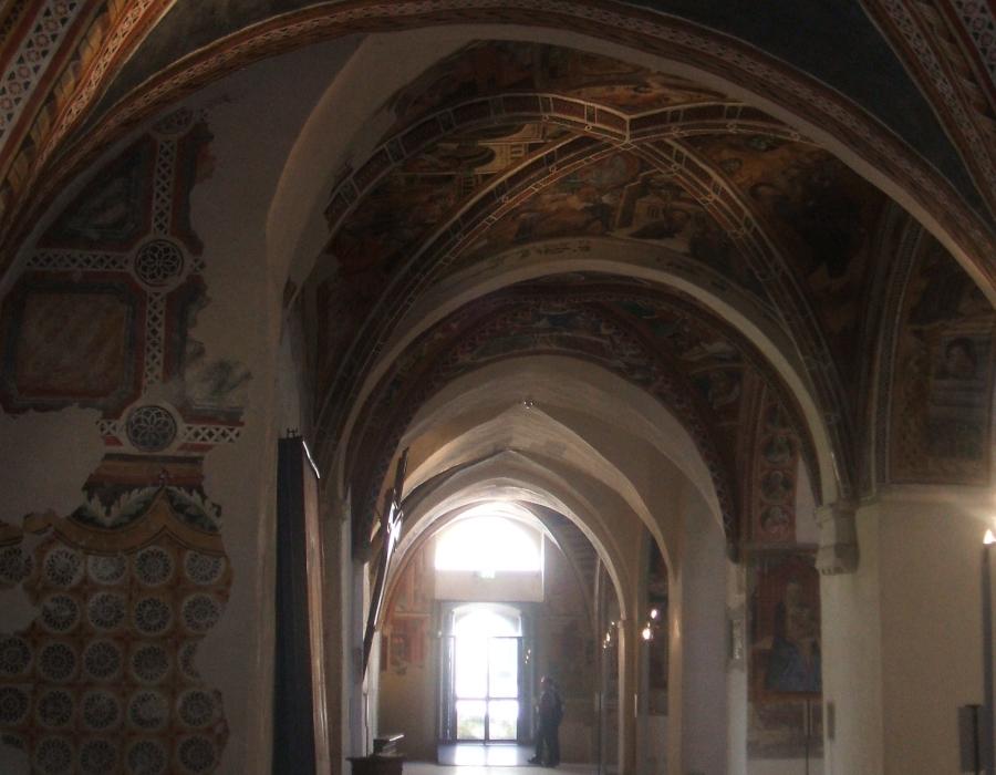 5. navata laterale