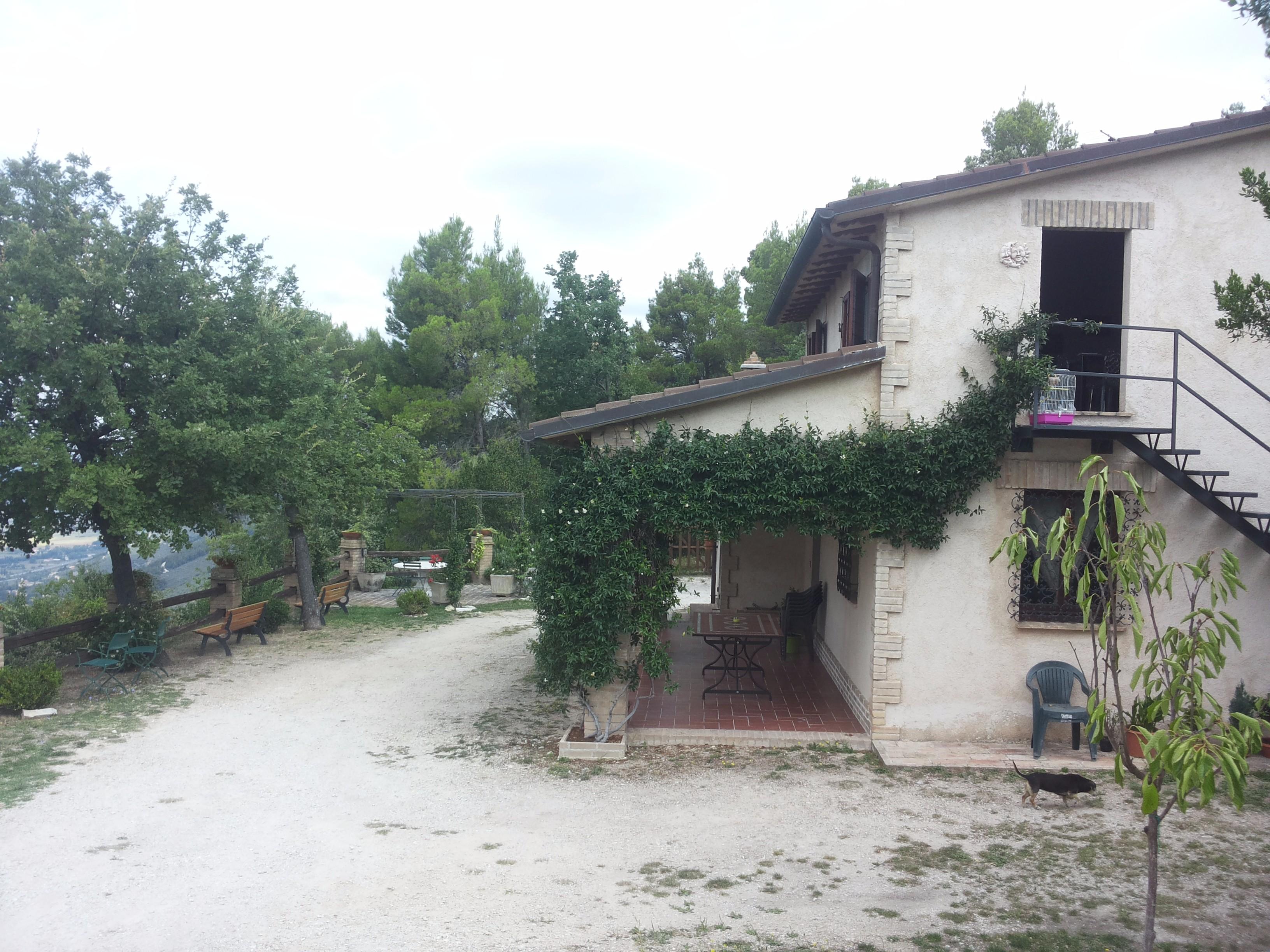 Belvedere 2